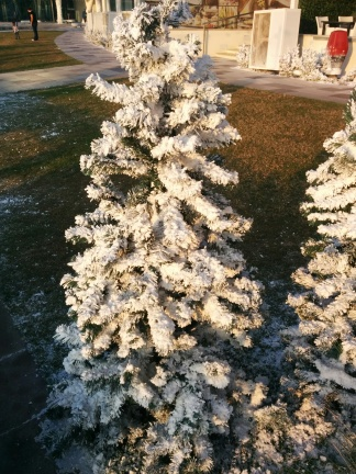 Artificial trees with snow