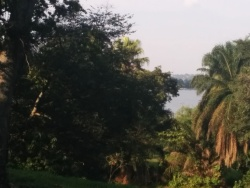 view towards Lake Victoria