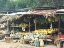 Roadside market full of fresh fruits and vegetables